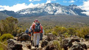 Kilimanjaro Hike
