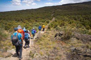 Luxury Kilimanjaro Trekking