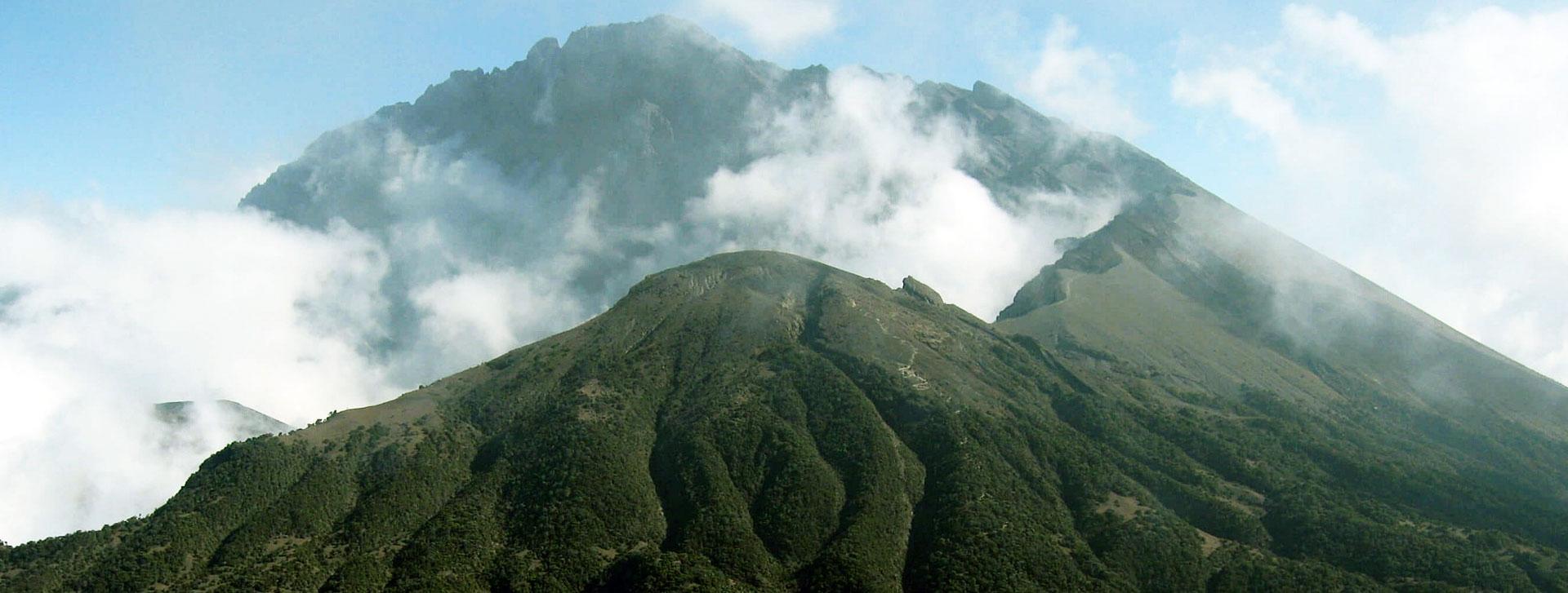 Mount Udzungwa Climbing
