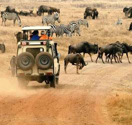Tanzania Destination